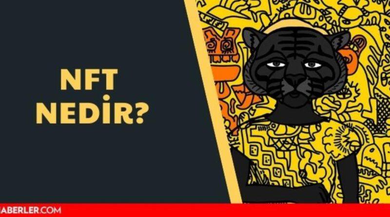 NFT nedir? NFT yapmak, satmak mümkün mü? NFT coin hakkında merak edilenler... Bitcoin