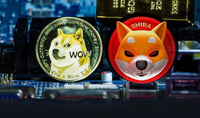 Köpek temalı iki kripto parada ivmeli yükselişler dikkat çekiyor Bitcoin