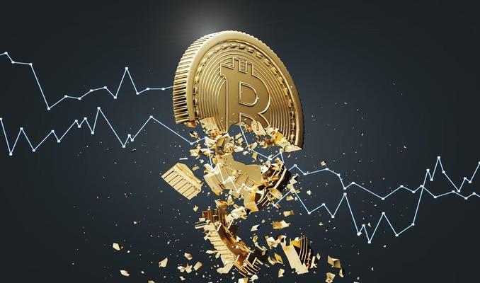 Yatırımcıların yarısına yakını o altcoini Bitcoin'e rakip görüyor Bitcoin